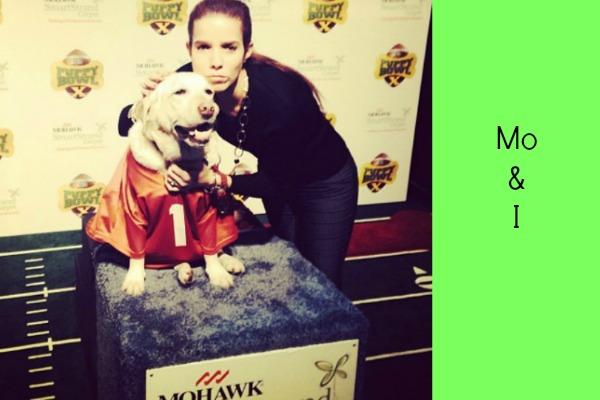 Mohawk Puppy Bowl 1