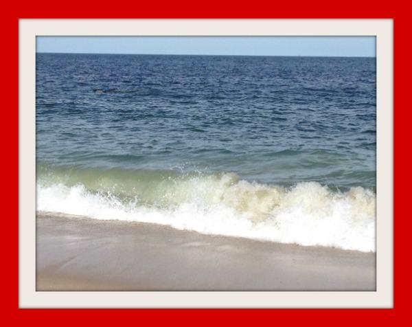 #JenksAmbassador Ocean Trendy Latina