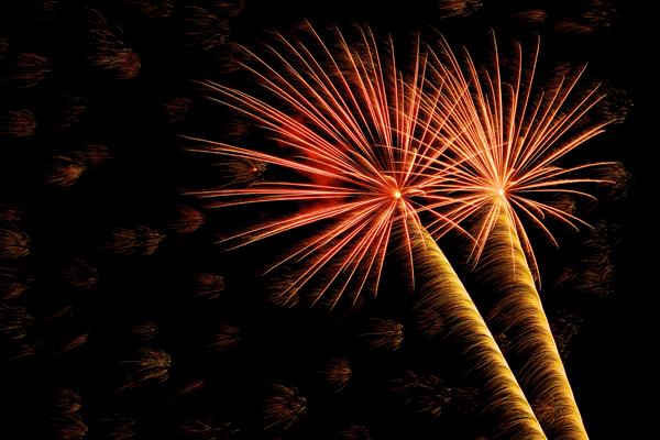 fireworks Jenkinsons
