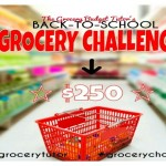 Grocery Budget Tutor Challenge