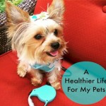 A Healthier Life For My Pets