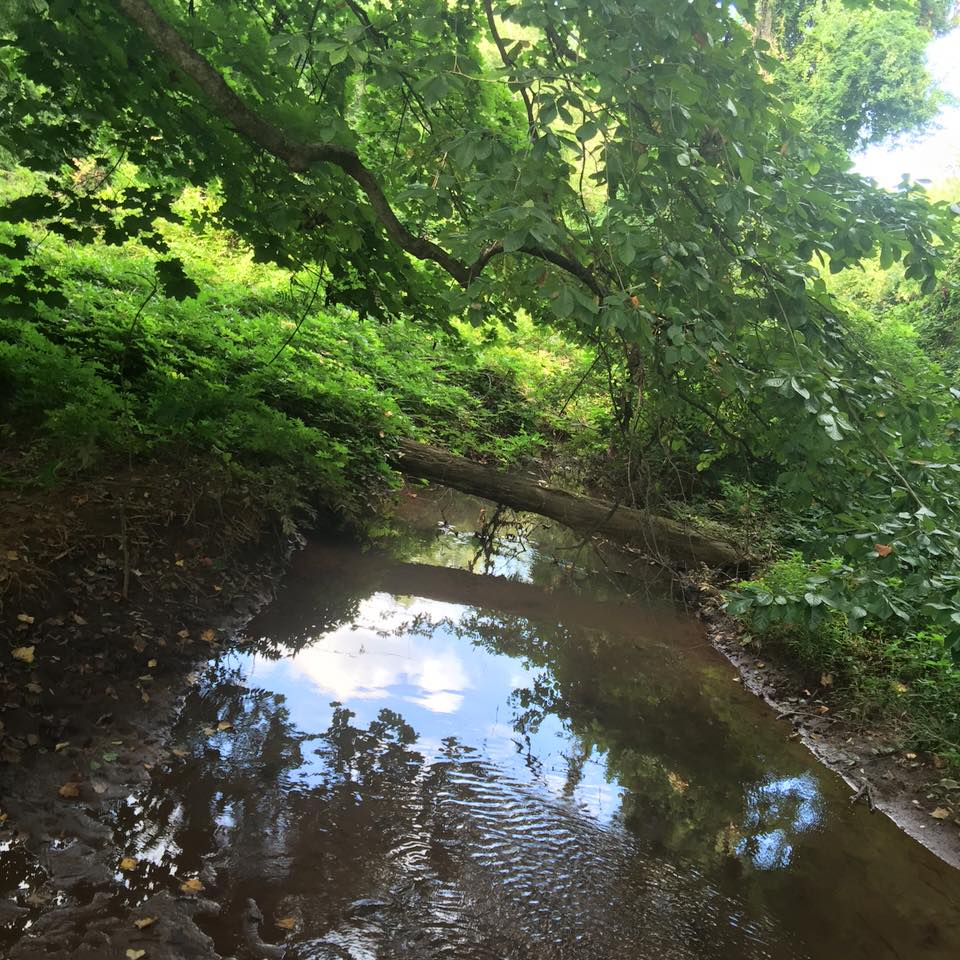 NJ Trail