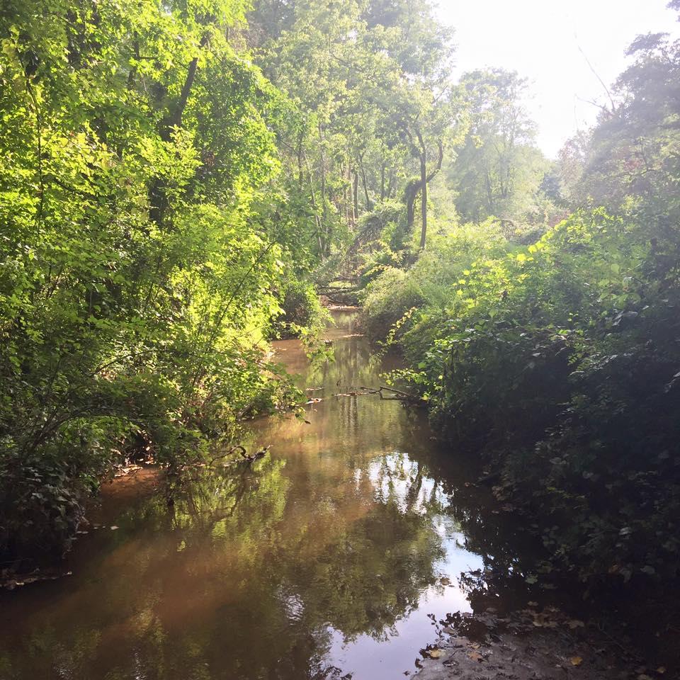 beautiful trail in NJ