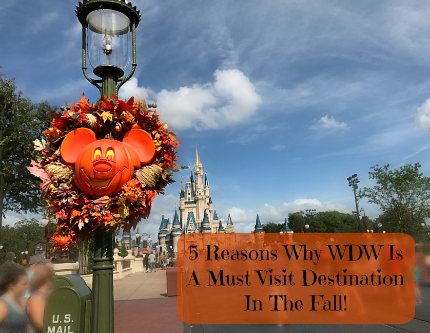 walt-disney-world-in-the-fall