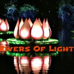 Why You Should Watch Rivers Of Light At Magic Kingdom