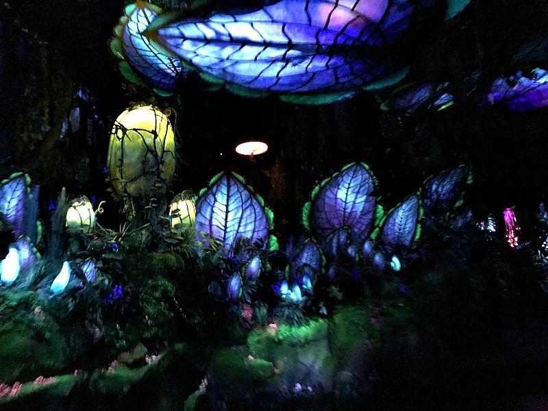 disney world Na'vi River Journey ride 3