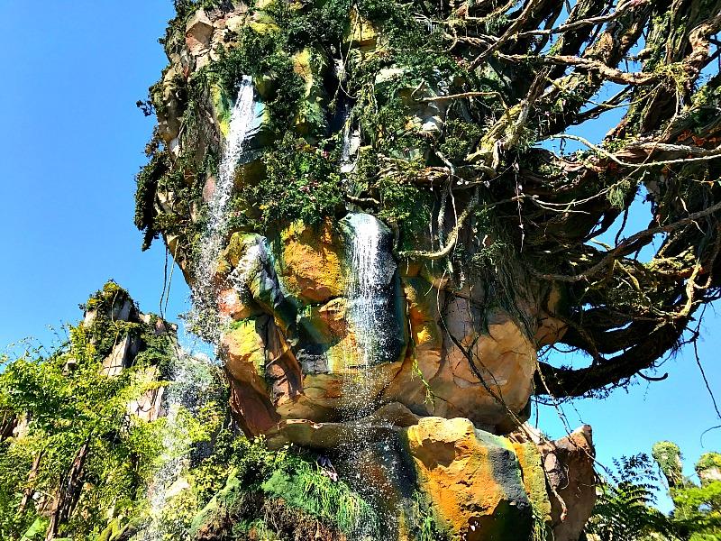 Pandora Vegetation