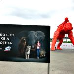 Protect Like A Mother At Brooklyn Bridge Park