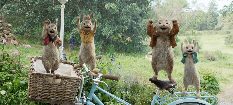 Peter Rabbit Live Action