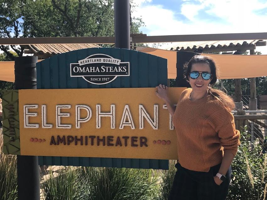 Elephants at Omaha Zoo