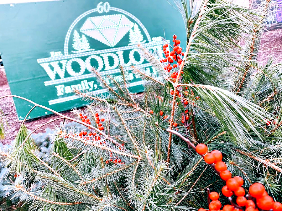 Winter Fest at woodloch
