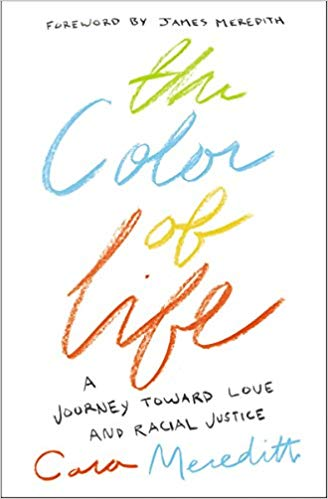 the color of life book