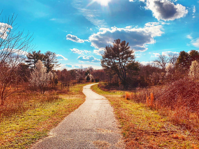 NJ State Park