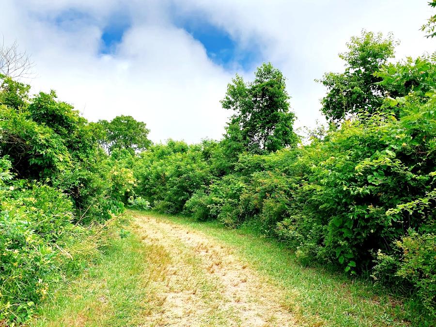 more trails at Cape May KOA