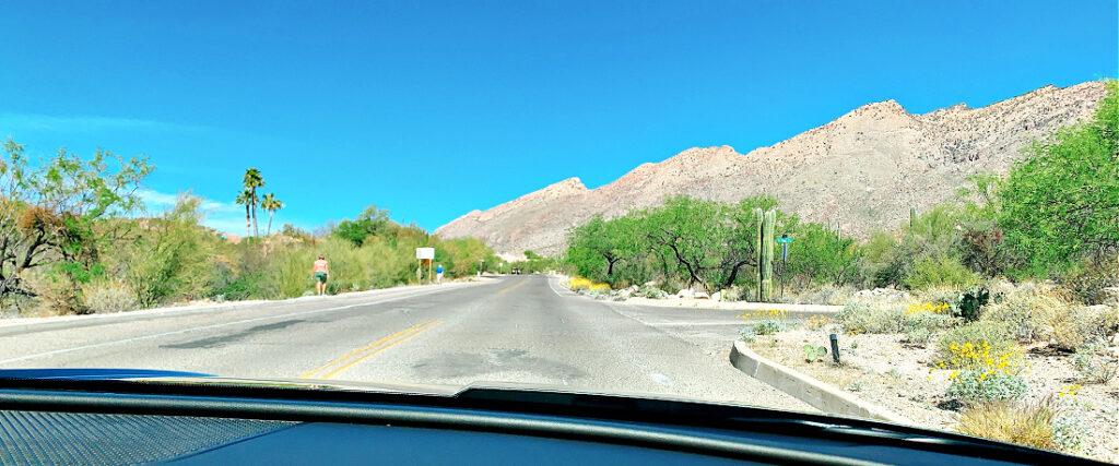 Tucson Arizona scenery