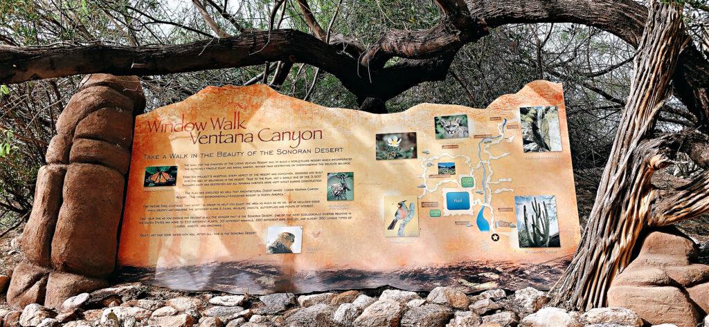 Ventana Canyon Walk