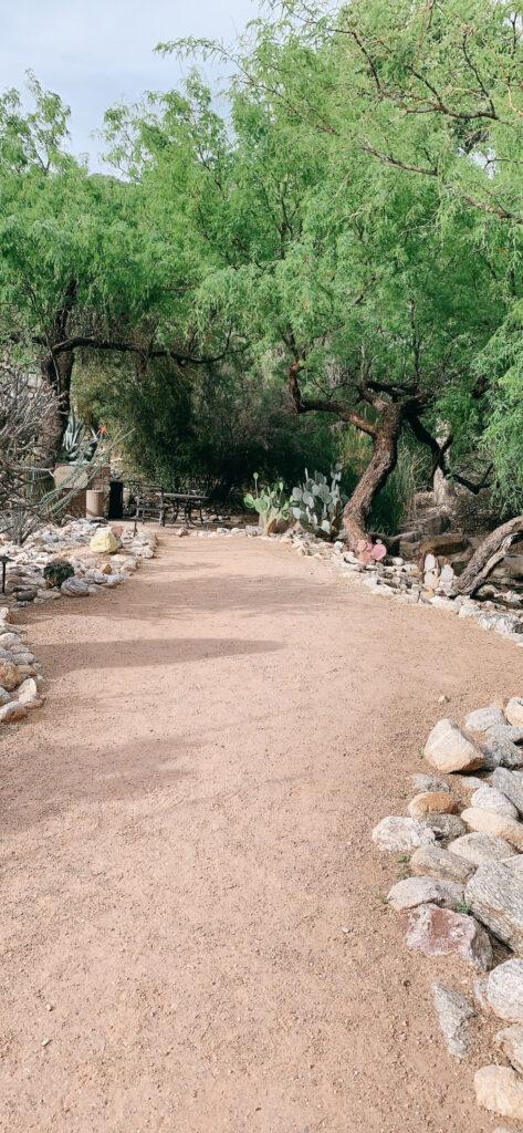 walking path at Ventana Canyon